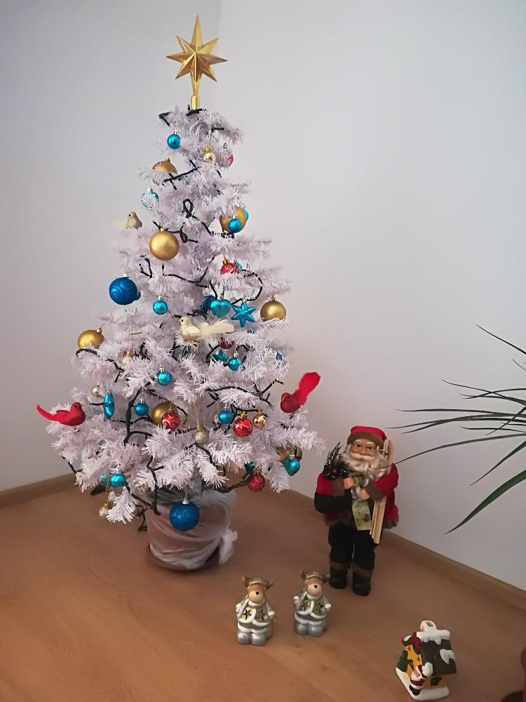 Symbol Vánoc nad míru a další zážitky