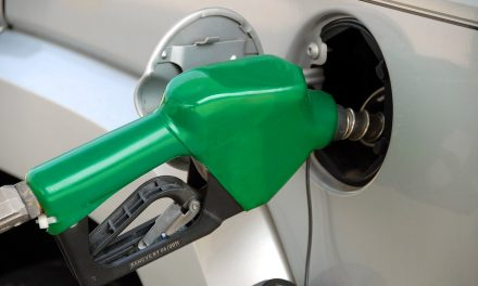 Česká obchodní inspekce kontrolovala v roce 2020 také jakost pohonných hmot