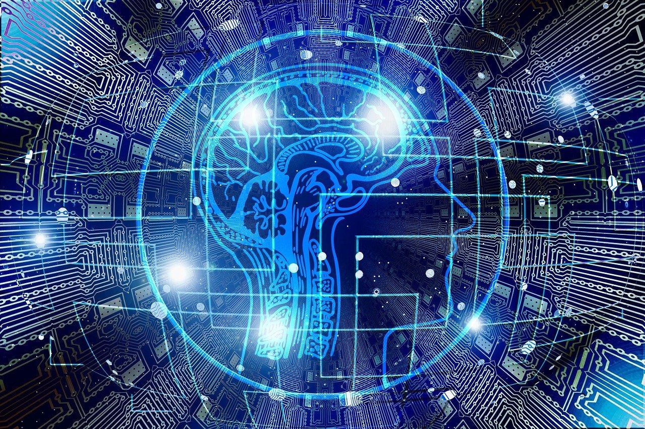 Evropský den mozku – zajímavosti o mozku nejen pro podnikatele.