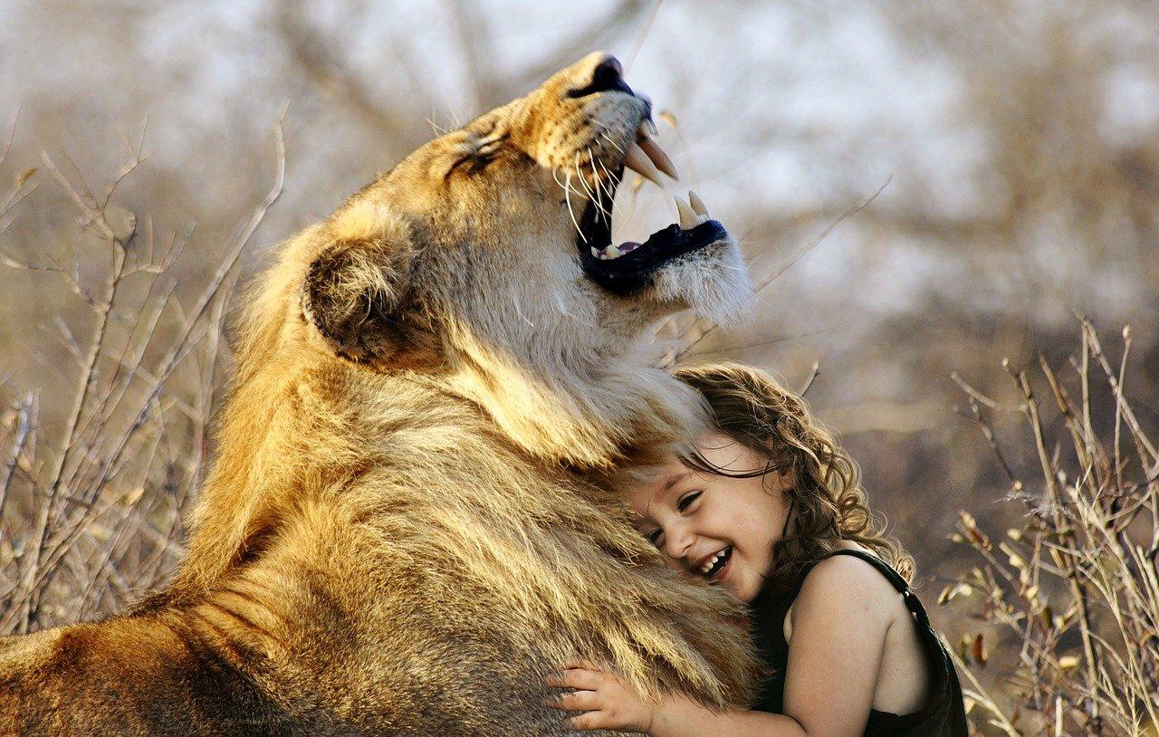 Mezinárodní den zvířat – zvířecí motivy
